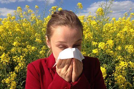 Odczulanie to jedyna metoda, która może wyleczyć z alergii