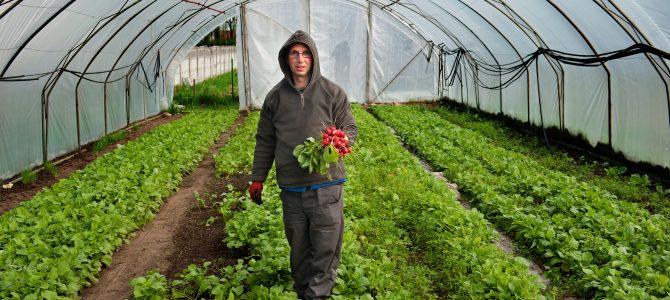Zdrowa i naturalna żywność z Zakładu Aktywności Zawodowej w Borowej Wsi