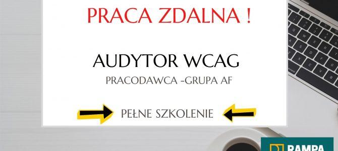 Praca zdalna – Audytor WCAG (developer) – do wyszkolenia!
